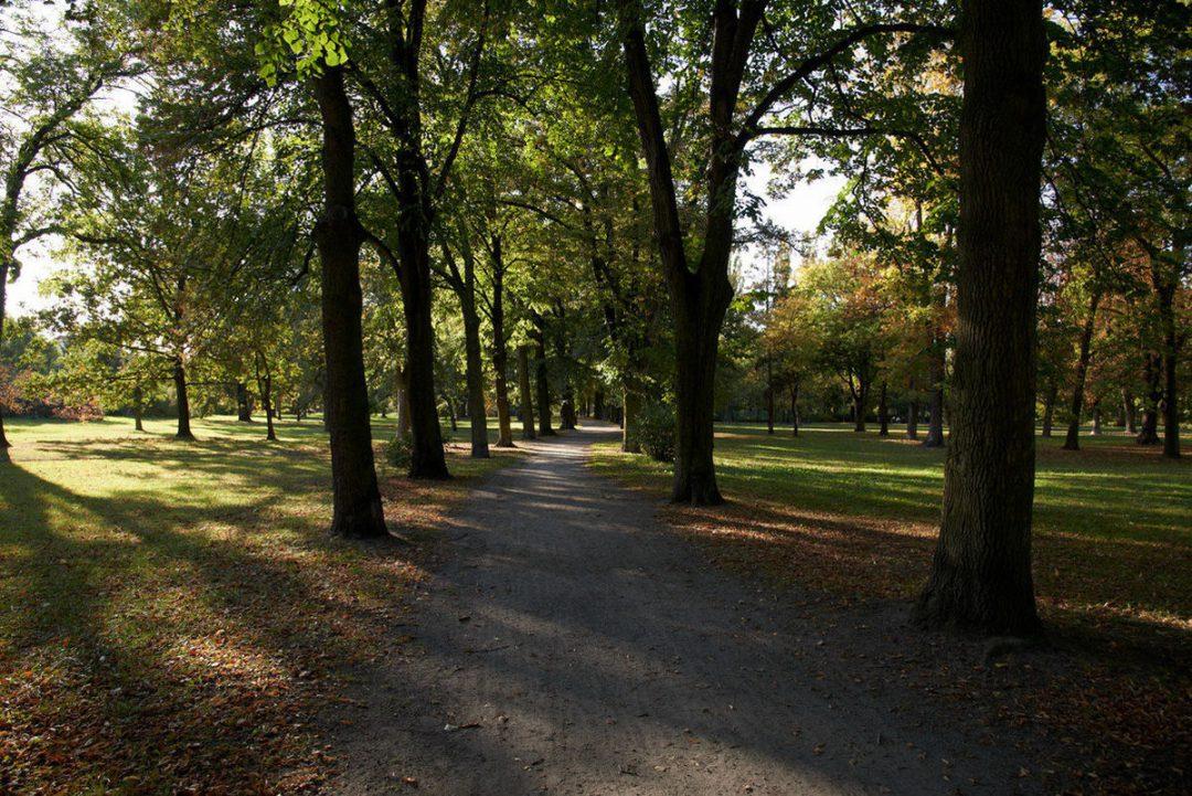 5 mało znanych parków we Wrocławiu.