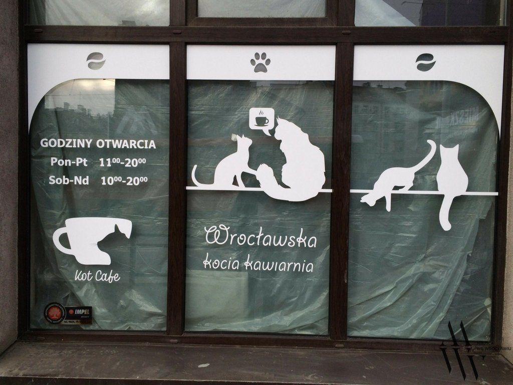 Wkrótce otwarcie pierwszej kociej kawiarni. – MiejscaWeWroclawiu.pl