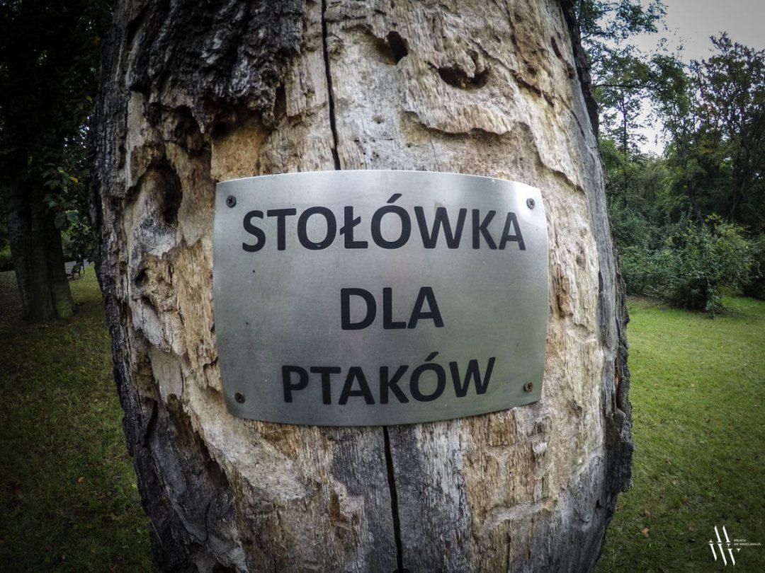 Stołówka dla ptaków. – MiejscaWeWroclawiu.pl