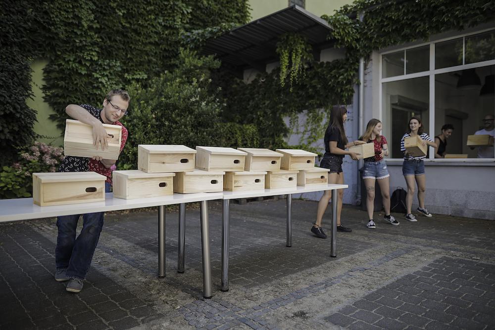 """Masz dosyć komarów? Zaproś na balkon jerzyki! We Wrocławiu rusza akcja """"Jerzyki zamiast komarów"""""""