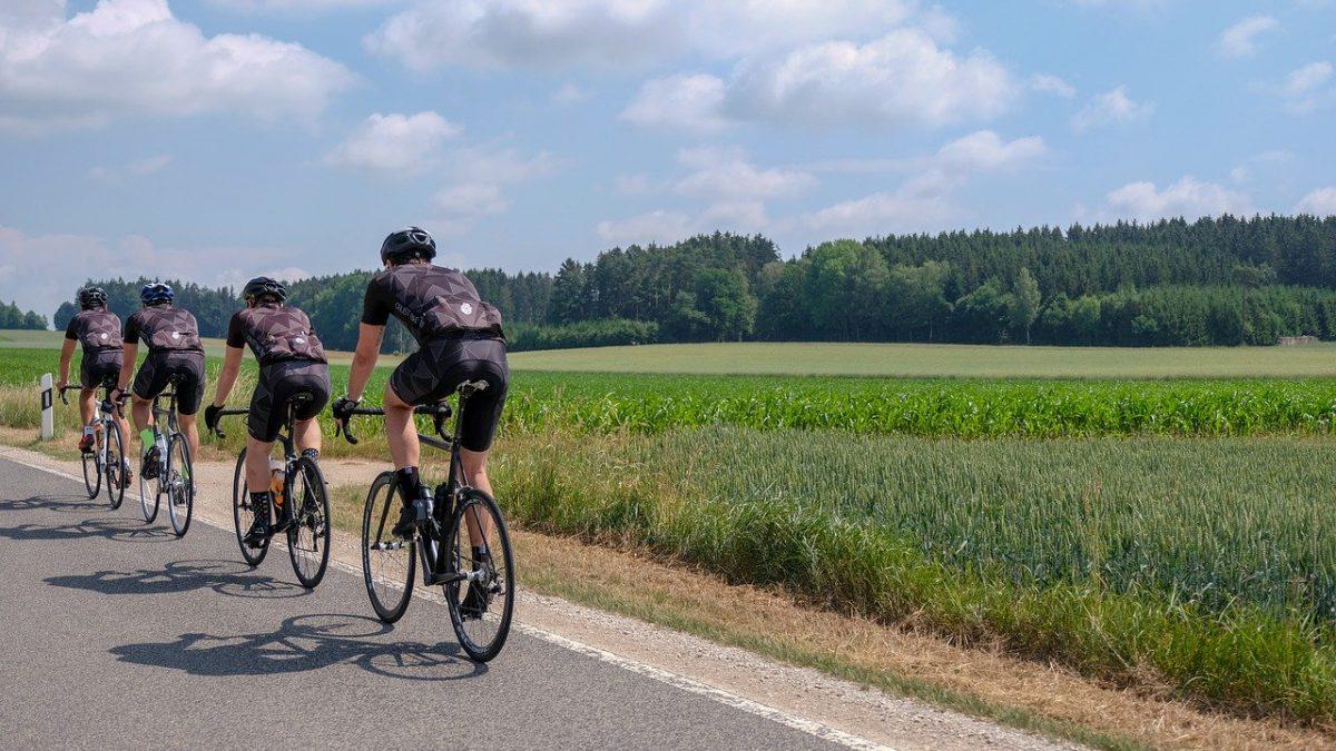 Powstaje autostrada rowerowa. Będzie miała ponad 500 km długości!