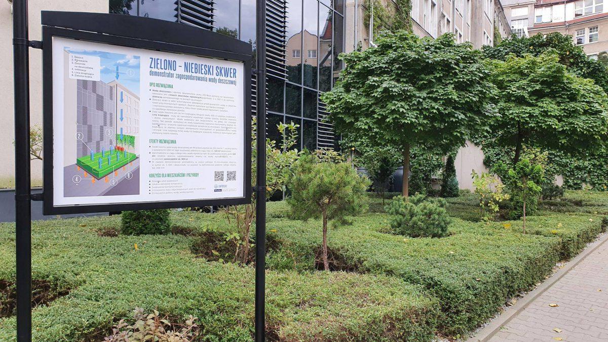 Zieleń na dziedzińcu Urzędu Miejskiego jest już podlewana deszczówką.