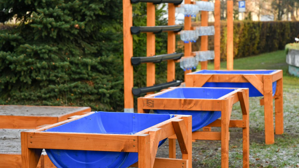 Przy wrocławskich szkołach powstały ogrody warzywne.