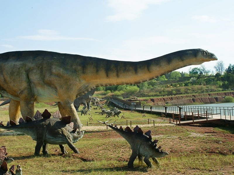We Wrocławiu pojawią się dinozaury.